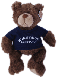 View: Sunnyside Resort Teddy Bear